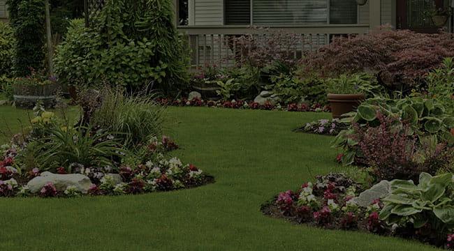 Midlothian Landscape Design