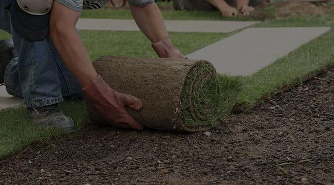 Midlothian Lawn Care